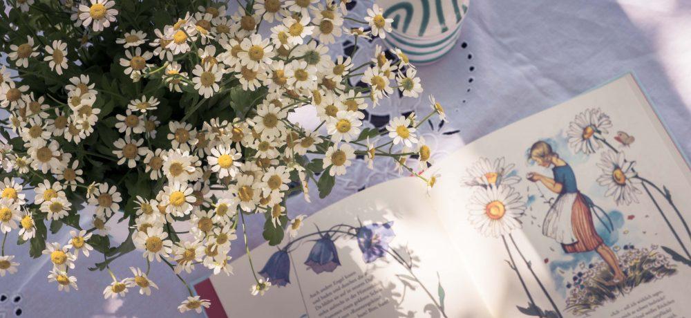Van Beren Spring Summer Collektion 2018
